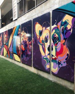 Community Gallery - 37