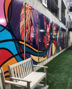 Community Gallery - 41
